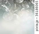 雪の結晶 雪 背景のイラスト 36186065