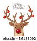 ベクトル クリスマス グリーティングのイラスト 36186092