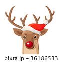 ベクトル クリスマス トナカイのイラスト 36186533