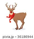 ベクトル クリスマス トナカイのイラスト 36186944