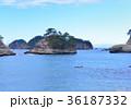 風景 自然 伊豆の写真 36187332