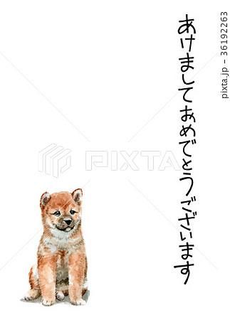 犬の賀詞入り年賀ハガキ素材柴犬タテ型 36192263