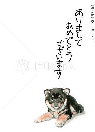 犬の賀詞入り年賀ハガキ素材黒柴犬タテ型 36192264