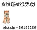 年賀状 犬 戌年のイラスト 36192286