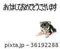 年賀状 戌年 子犬のイラスト 36192288