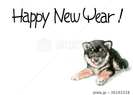 犬の賀詞入り年賀ハガキ素材黒柴犬ヨコ型 36192338