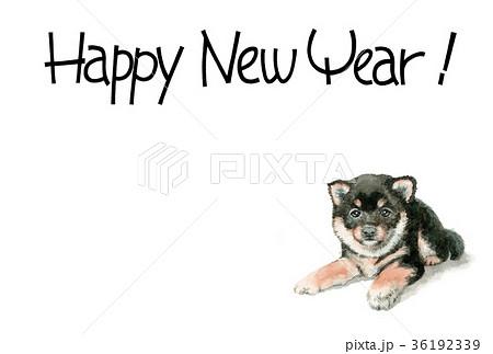犬の賀詞入り年賀ハガキ素材黒柴犬ヨコ型 36192339