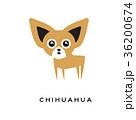 ちわわ チワワ 子犬のイラスト 36200674
