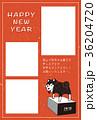 年賀状 戌年 柴犬のイラスト 36204720