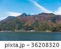 河口湖 紅葉 自然の写真 36208320