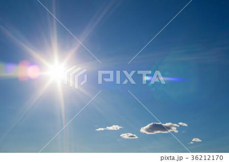 太陽 36212170