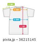 半袖 半袖Tシャツ Tシャツのイラスト 36215145