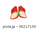 カットフルーツいちご 36217130