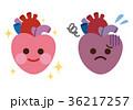 心臓 臓器 健康のイラスト 36217257