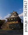 浜松城 冬季 [静岡県] 36219617