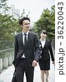 コンセプチュアルビジネス 36220043