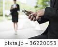 コンセプチュアルビジネス 36220053