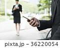 コンセプチュアルビジネス 36220054