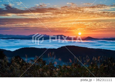 広島県三次市の岡田山から望む雲海と日の出 36231111