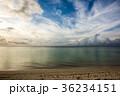 グアム タモンビーチ 36234151