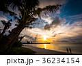グアム タモンビーチの夕景 36234154