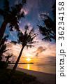 グアム タモンビーチの夕景 36234158