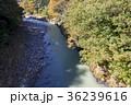 寸庭橋 渓谷 奥多摩の写真 36239616
