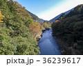 寸庭橋 渓谷 奥多摩の写真 36239617