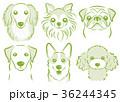 犬のイラスト 36244345