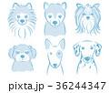犬 動物 ペットのイラスト 36244347