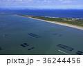 東京湾 海 風景の写真 36244456
