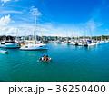 ヨットハーバー ヨット 港の写真 36250400