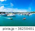 ヨットハーバー 港 ニューカレドニアの写真 36250401