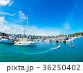 ヨットハーバー ヨット 港の写真 36250402