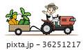 農業-トラクター 36251217