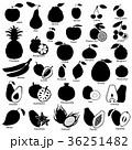 りんご アップル リンゴのイラスト 36251482