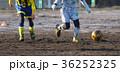 サッカー フットボール 36252325