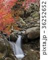 昇仙峡 渓谷 滝の写真 36252652