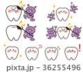 歯 表情 セットのイラスト 36255496