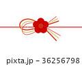 梅 水引 梅の花のイラスト 36256798