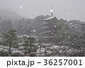 瑠璃光寺 五重塔 雪の写真 36257001