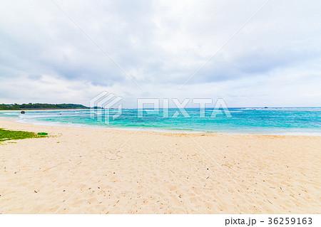 土盛海岸 奄美大島 36259163