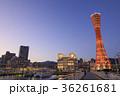 神戸 メリケンパーク 神戸ポートタワーの写真 36261681