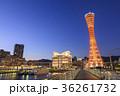 神戸 夜景 メリケンパークの写真 36261732