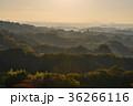 竹田市 風景 秋の写真 36266116