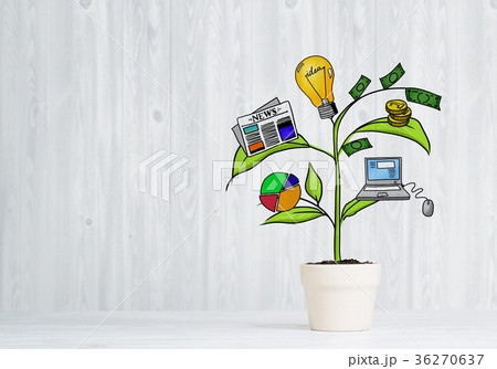 Drawn income tree in white pot for business investment savings and making moneyの写真素材 [36270637] - PIXTA
