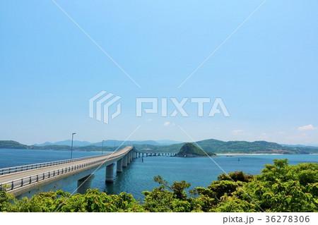 山口県 角島からの角島大橋 36278306