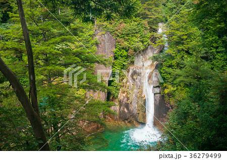 長野県 柿其渓谷の牛ヶ滝 36279499