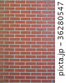 壁 煉瓦 壁面の写真 36280547