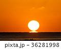 ダルマ太陽(2月 三重県 日の出 朝日) 36281998